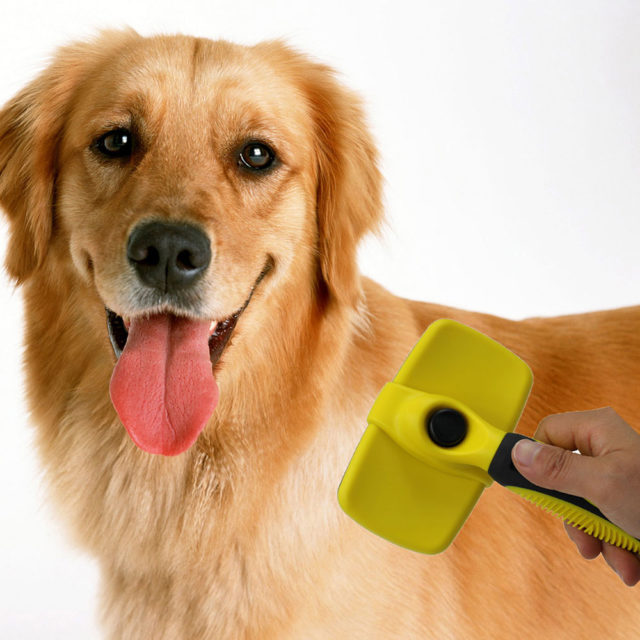 Deshedding Grooming Pet's Brush