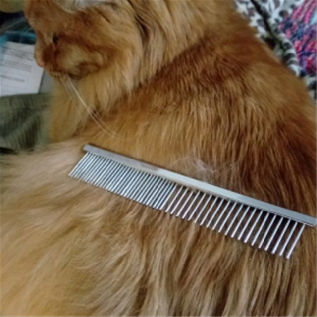 Metal Comb for Pet